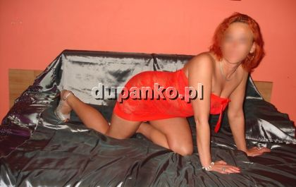 Cute Amanda, Opole, opolskie - erotic offer photo nr 4